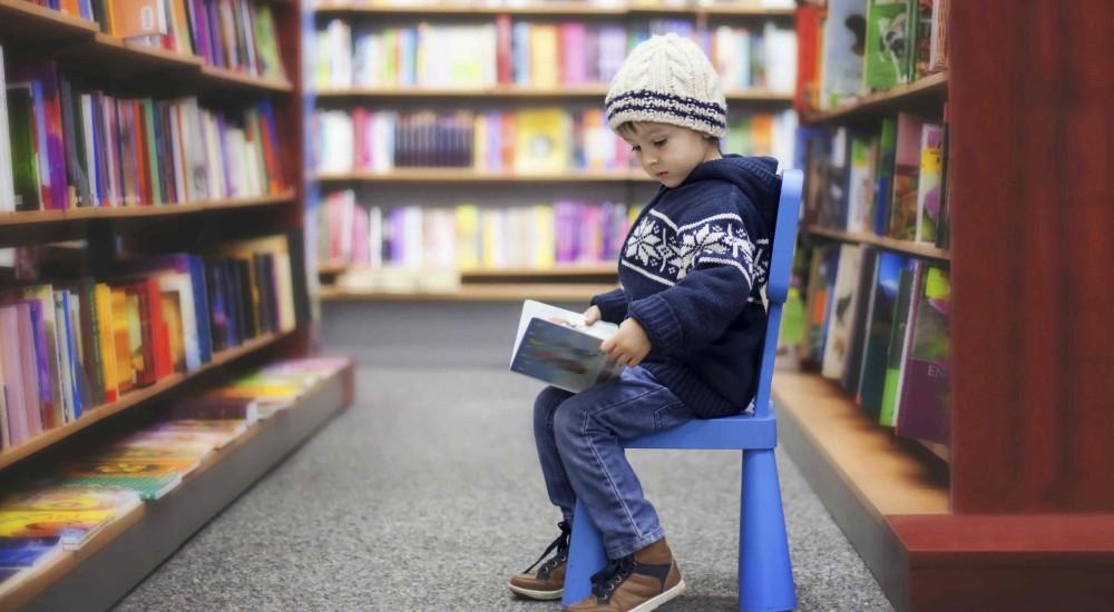 RBCC: le biblioteche dei ragazzi e dei lettori forti. Un'analisi dei dati statistici 2018