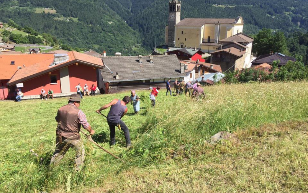 Campagne fotografiche per il paesaggio della Valle Camonica: cerchiamo 3 freelance