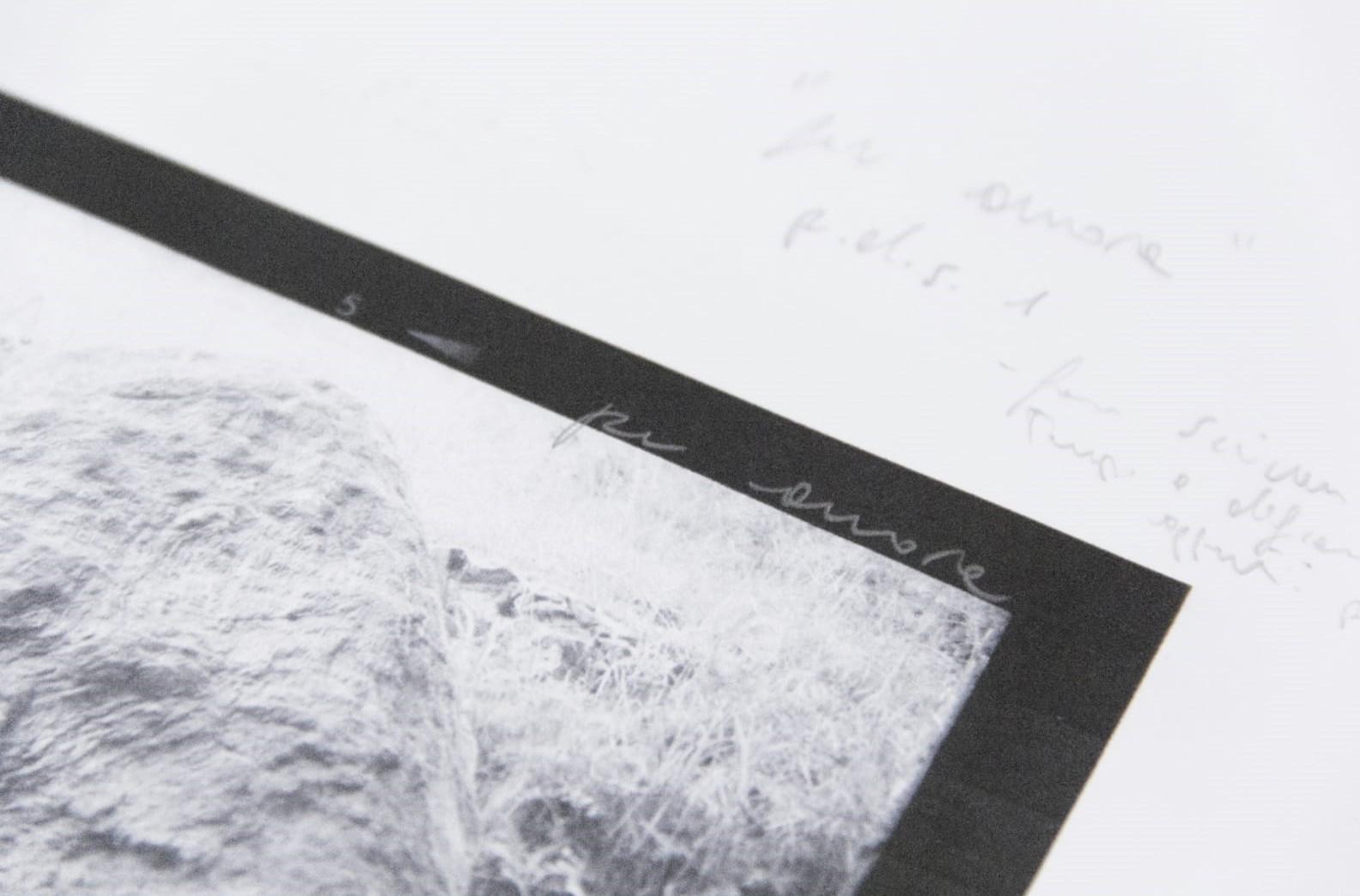 Lidia Bianchi - Courtesy l_artista e Associazione falia