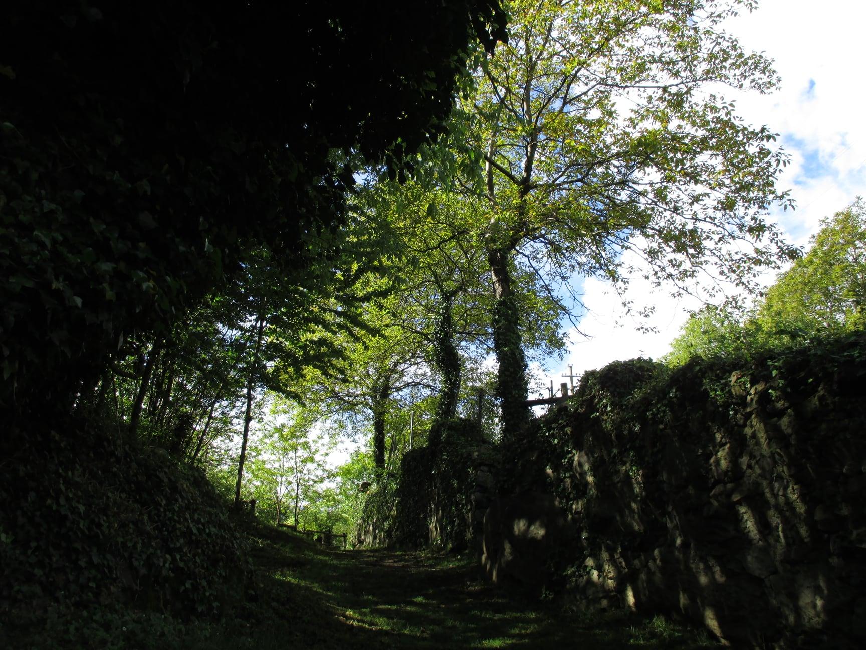 Courtesy of © Parco Archeologico Comunale Seradina-Bedolina